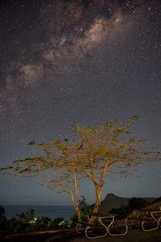 One Tree Hill, Hamilton Island, Australia