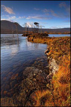 Loch Assynt, Lochinver, Highlands, Scotland