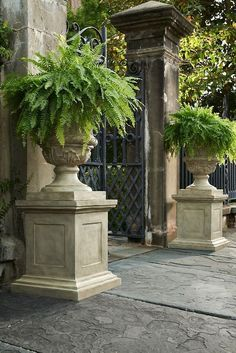 Acanthus urns, with ferns on plinths