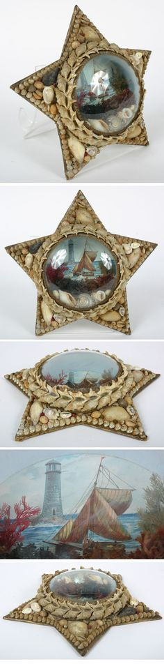 Victorian domed seashell diorama