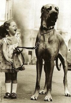 Love Great Danes and the smile on the little girls face. jagoddesigns Love Great Danes and the smile on the little girls face. Love Great Danes and the smile on the little girls face. Love My Dog, Puppy Love, Baby Dogs, Dogs And Puppies, Doggies, Tier Fotos, Cutest Thing Ever, Mans Best Friend, Belle Photo