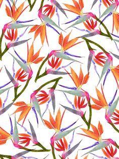 Ave del paraiso Textile Pattern Design, Textile Patterns, Pattern Art, Color Patterns, Pretty Patterns, Beautiful Patterns, Flower Patterns, Surface Design, Surface Pattern