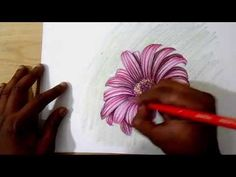 how to draw and shade dahlia flower realistic - YouTube