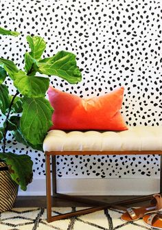 The Vault Files: DIY File: Spots Wall