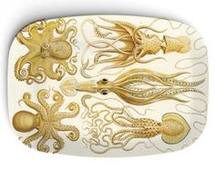 Octopuses antique artwork on 10 x 14 Melamine by TheMadPlatters, $24.00