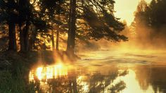 floden, Sverige, freewallpapers, natur, landskap vektor
