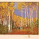 Aspen - Red River Gustave Baumann (1881-1971) - The Owings Gallery