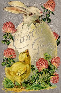 White Bunny Rabbit in Egg Chick Clover Easter Greeting Holiday Vintage Postcard Easter Art, Hoppy Easter, Easter Crafts, Easter Bunny, Easter Decor, Easter Ideas, Images Vintage, Vintage Postcards, Vintage Cards