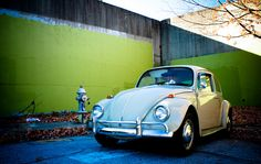 I want this Beetle