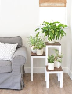 You know every house has an empty corner that could use some decor. Here's an idea: fill one of those corners with greenery by building a DIY tiered plant stand. This is my second project in partnersh