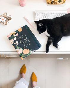 Nunca pensei que pudesse ter um trabalho tão incrível!  Trabalhar de casa com as minhas gatas por perto e espalhando produtos lindos de marcas incríveis por todo Brasil  Obrigada por existir @beemine.shop Instagram Blog, Rose Gold, Diy, New Homes, Cute, How To Make, Crafts, Polaroid, Home Decor