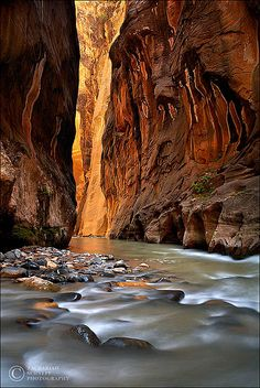 This national park looks astounding - every picture I have seen is breathtaking and with so many different kinds of interesting and beautiful things to see. Canyon of Wonders - Zion National Park, Utah Oh The Places You'll Go, Places To Travel, Places To Visit, Zion National Park, National Parks, Fuerza Natural, Nature Sauvage, Fjord, Bryce Canyon