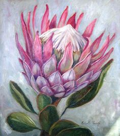 King Protea in oil