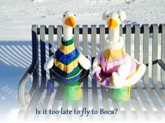 One of our most popular items of all time is our goose and its' many outfits. Our geese Name & Name have been out and about, and every week we are going to showcase Name & Name in different places with different outfits. Some you can purchase, and some using objects around the home.