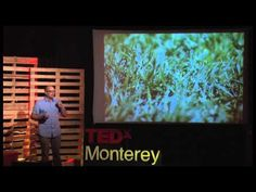 "I teach. I think.: TEDx Monterey Talk on The 20% Project: ""Don't Call it a Classroom"""