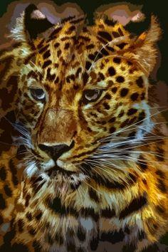 Jaguar - 20140801