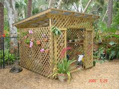 Advice on everything gardening Outdoor Flowers, Outdoor Planters, Shed Images, Orchid House, Orchids Garden, Roses Garden, Shade House, Orchid Pot, Diy Greenhouse
