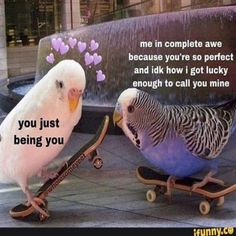 The 100 Best 'I Love You' Memes That Are Cute, Funny & Romantic All At The Same Time