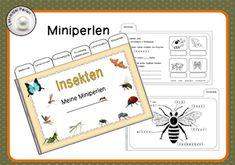 Miniperlen: Insekten