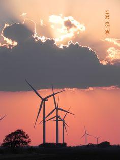 South Texas wind farm.