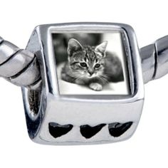 Pugster Cat In Black & White Beads Fit Pandora Bead Bracelet Pugster. $12.49. Unthreaded European story bracelet design. It's the photo on the heart charm. Bracelet sold separately. Fit Pandora, Biagi, and Chamilia Charm Bead Bracelets. Hole size is approximately 4.8 to 5mm