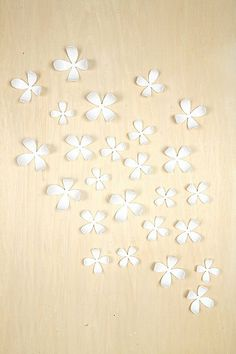I have a huge piece of plywood that currently has green apples.  I am going to get these and redo the piece.  Maybe paint the wood a tan color, or gold with these white flowers??  Wallflower Wall Decor - Set Of 25 from Urban Outfitters