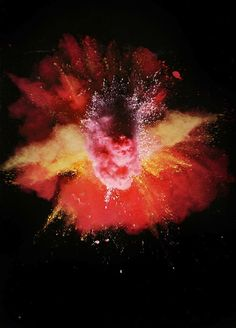 Eruptions of color burst towards the viewer in these vibrant photographs, entitled Explosions, by Nick Knight. Based in London