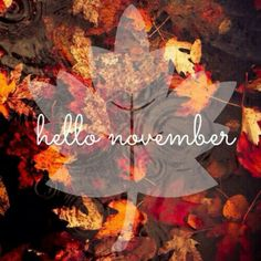 Hello November Hello November Hello November Hello November The winter holidays have always been enjoyable and … November Pictures, November Images, November Quotes, November Calendar, November Month, Hello November, Sweet November, Seasons Months, Seasons Of The Year