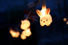 bunny lights