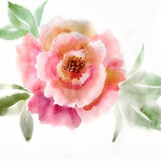 For a beginner's attempt at painting, this turned out to be quite fun. Cheap watercolors plus watching a ton of videos trying to convince myself to try it out. Loose watercolor peony in pink, yellow and red. Line Drawing, Peonies, Watercolor Peony, Pink Yellow, Watercolors, Drawings, Fun, Painting, Illustrations