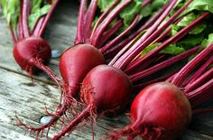 Can Cause Gallstones Beets have a high concentration oxalic acid. Eating food with a high amounts of oxalate, such as beets, could form dangerous oxalic acid crystals or gallstones in the body.