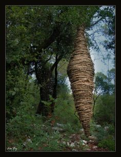 Forest Sculptures by Spencer Byles - Organic Geometry