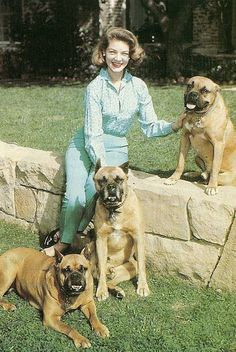 Lauren Bacall with her Boxer dogs Humphrey Bogart, Bogart And Bacall, Lauren Bacall, I Love Dogs, Puppy Love, Boxer Puppies, Boxer Rescue, Chihuahua Dogs, Boxer Love