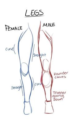 Learn To Draw Male and female leg anatomy drawing reference Viria, Anatomy Reference, Art Reference Poses, Leg Reference, Human Drawing Reference, Human Body Drawing, Human Figure Drawing, Body Base Drawing, Female Reference