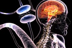 Differenza tra morbo di Alzheimer, demenza senile, vascolare ereversibile
