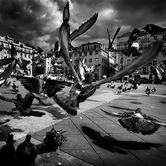 Beautiful Black and White Photography | Smashing Magazine