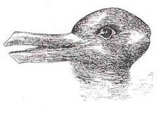 rabbit or a duck?