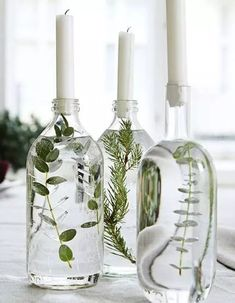 Handmade Home Decor Beautiful table decoration. Decorate glass bottles with aquatic plants. Easy Home Decor, Handmade Home Decor, Cheap Home Decor, Winter Home Decor, Classic Home Decor, Home Goods Decor, Do It Yourself Decoration, Deco Floral, Home Decor Accessories