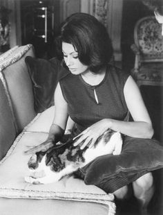 Italian actress Sophia Loren posing with a cat Get premium, high resolution news photos at Getty Images Sophia Loren, Celebrities With Cats, Celebs, Gatos Cool, National Cat Day, Son Chat, Italian Actress, Cat People, Beautiful Cats