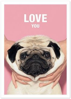 This product is only available via Etsy (by clicking you will be redirected) Set of 3 awesome greeting cards of Loulou the pug (size 105x148mm). Each card comes with a white envelope. Card is blank in #Pug