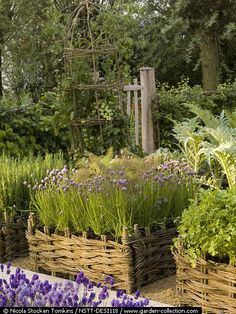 traditional raised beds