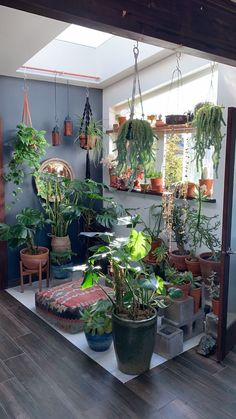 Thanks merlesnorden for this post.Sacred Space Redesign for Fall.Having a sacred space is essential to my well-being. Because my sacred element is plants, you'll see a lot of houseplants in my sacred space! I like to redesign my space with the# Fall