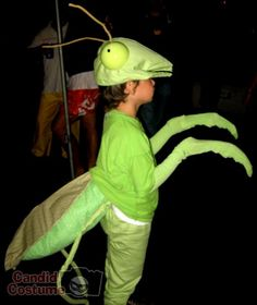 praying mantis costume to make | Praying Mantis Costume submitted by: jacy cabaniss, October 26 2007