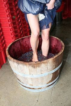 Crushing grapes - Make wine in Tuscany Drinks Alcohol Recipes, Wine Recipes, Oktoberfest Party, Toscana Italia, Wine Vineyards, Under The Tuscan Sun, Red Wine Glasses, Vides, In Vino Veritas