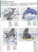 Delfino Orca Foca