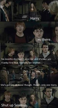 :) This is probably my favorite Harry and Ginny moment. Other than George finding them in the kitchen :)