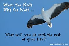 Tips to help you set a new course when the kids leave home. Empty nest syndrome. When the kids leave home will you start something new? by Jo Castro