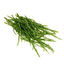 Samphire - favourite veggie at the moment! Fresh and Salty, low on calories and high content of calcium and magnesium! Processed Sugar, Healing Herbs, Eat Right, Health And Nutrition, Veggies, Healthy Recipes, Fresh, Food, Content