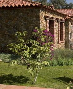 természetes kertek Fa, Cottage Homes, Pergola, Arch, Outdoor Structures, Gardening, Country, Modern, Projects