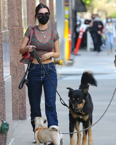 Emily Ratajkowski, Kendall Jenner, New York City, Take That, Dogs, Outfits, Clothes, Instagram, Style